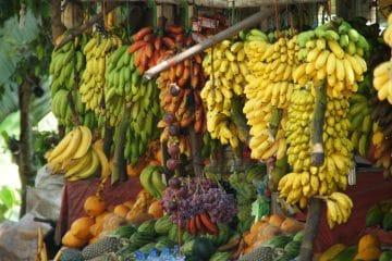 مقشرة الموز الأوتوماتيكية Cerere 6000 والمعالجة الأوتوماتيكية لللب